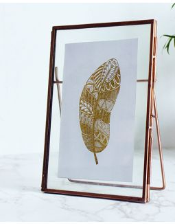 Golden Feather Floating Frame