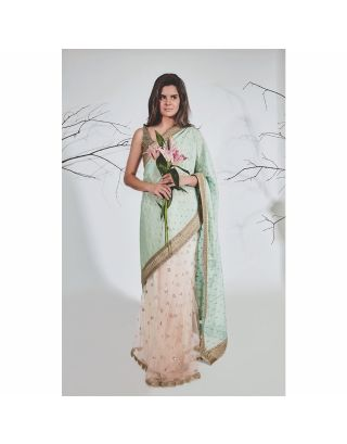 Pastel Green and Pink Georgette Saree