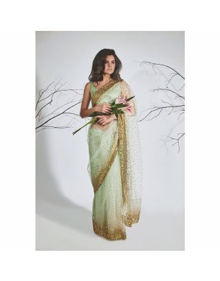 Pastel Green Gold Work Saree