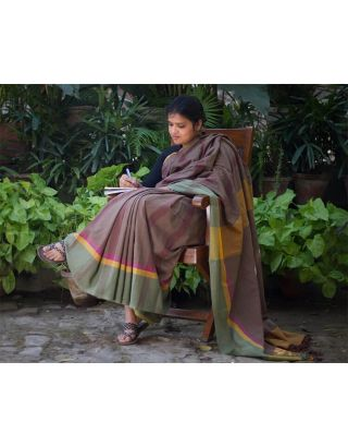 Brown Shaded Saree with Border