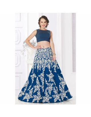 Blue Crop Top with Embroidered Skirt